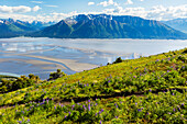 Scenic view of Kenai Mountains and Turnagain Arm with the trail to Bird Ridge in the foreground, Southcentral Alaska, Summer