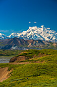 Two backpackers hiking on Grassy Pass in Unit 14 in Denali National Park with Mt. McKinley in the background, Interior Alaska