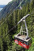 Passenger cabin of Mount Roberts Tramway en route, Juneau, Southeast Alaska