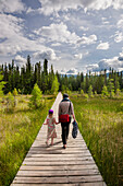 A mother and daughter walk down a boardwalk through a wetland surrounded by evergreen trees, Liard River Hot Springs Provincial Park, British Columbia, Canada, Summer