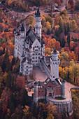 View of the castle Neuschwanstein from above in Autumn, Upper Allgaeu, Bavaria, Germany