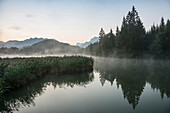Sunrise at Lake Geroldsee with reflection, Wagenbruechsee, Kruen, near Garmisch-Partenkirchen, Upper Bavaria, Bavaria, Germany