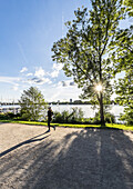 Jogger at the Outer Alster, Hamburg, north Germany, Germany