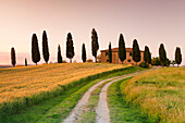 Farm house with cypress trees at sunset, near Pienza, Val d'Orcia Orcia Valley, UNESCO World Heritage Site, Siena Province, Tuscany, Italy, Europe