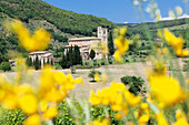 Sant Antimo Abbey, monastery, Castelnuovo dell'Abate, near Montalcino, Val d'Orcia Orcia Valley, Siena Province, Tuscany, Italy, Europe