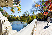 Bow Bridge over The Lake and rowing boats, Autumn, fall, skyline, Central Park, Manhattan, New York City, USA, America
