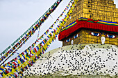 Bodnath Stupa, Boudha, Boudnath, Bauddhanath, Kathmandu, Nepal, Himalaya, Asia