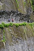 Two young women walk on a small path that has been carved into a steep rock wall, Nepal, Himalaya, Asia