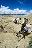 Pack animals, horses, mules in the surreal landscape typical for Mustang in the high desert around the Kali Gandaki valley, the deepest valley in the world, Mustang, Nepal, Himalaya, Asia