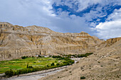 Dhigaon, tibetian village with a buddhist Gompa in the Kali Gandaki valley, the deepest valley in the world, fertile fields are only possible in the high desert due to a elaborate irrigation system, Mustang, Nepal, Himalaya, Asia