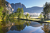 Yosemite Falls and the Merced River at dawn on a misty Spring morning, Yosemite Valley, UNESCO World Heritage Site, California, United States of America, North America