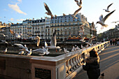 Child feeding gulls on St. Michel's Bridge, Paris, France, Europe