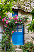 Thatched house with blue door and windows, museum village Kerhinet, nature park Brière, Bretagne, France, Europe