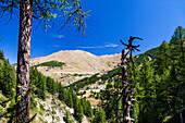 Queyras, Departement Hautes-Alpes, Region Provence-Alpes-Cote d'Azur, Alps, France, Europe
