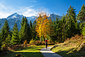 Woman on a hiking trail near Garmisch in fall with Wetterstein mountains, bavarian Alps, Upper Bavaria, Germany
