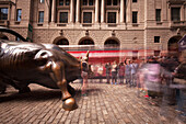 Bull near new York Stock Exchange, financial district, Downtown, Manhattan, New York, USA