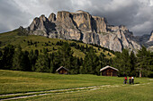 Mountain biker at Col Rodella, Sella group inthe background, Trentino, South Tyrol, Italy