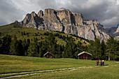 Mountainbiker am Col Rodella, dahinter Sella Gruppe, Trentino-Südtirol, Italien