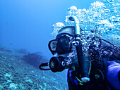 Diver breathing out with air bubbles - Indonesia, Java