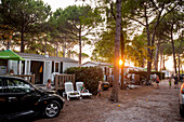 Camping site in the evening, Marina di Venezia, Punta Sabbioni, Venice, Italy, Europe