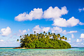 Tropical island of Motu Taakoka covered in palm trees in Muri Lagoon, Rarotonga, Cook Islands, South Pacific, Pacific
