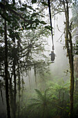 Mashpi Lodge Sky Bike on a misty morning in the Choco Rainforest, an area of Cloud Forest in Pichincha Province, Ecuador, South America