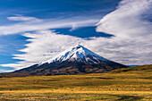 Cotopaxi Volcano 5897m summit, Cotopaxi National Park, Cotopaxi Province, Ecuador, South America