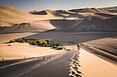 Tourists climbing sand dunes at sunset at Huacachina, a village in the desert, Ica Region, Peru, South America