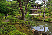 Ginkaku-ji Silver Pavillion, classical Japanese temple and garden, main hall, pond and leafy trees in summer, Kyoto, Japan, Asia