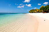Turquoise sea and white palm fringed beach, Le Morne, Black River, Mauritius, Indian Ocean, Africa