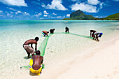 Fisherman on a beach being overlooked by the basaltic monolith, Le Morne, Black River, Mauritius, Indian Ocean, Africa