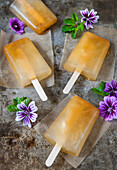 Homemade Iced Tea Popsicles