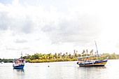 fishing boats anchored in the lagoon, palm island, Atlantic ocean, Boipeba, Bahia, Brasil