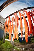 Drying rack of salmon at fish camp in Bristol Bay, Southwest Alaska, Summer