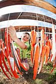 Boy looking at drying rack of salmon at fish camp in Bristol Bay, Southwest Alaska, Summer