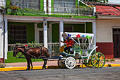 Driver of a horse-drawn carriage tour smiles and waves for a picture, Granada, Nicaragua