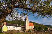 Church, Schwallenbach on the Danube, UNESCO World Heritage Site The Wachau Cultural Landscape, Lower Austria, Austria