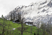 Grindelwald, farm house, Wetterhorn, UNESCO World Heritage Site Swiss Alps Jungfrau-Aletsch, canton Bern, Bernese Oberland, Switzerland