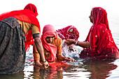 Women having a ritual bath in lake Pichhola, Udaipur, India