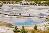 Norris Geyser Basin, Yellowstone National Park, UNESCO World Heritage Site, Wyoming, United States of America, North America