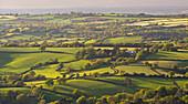 Rolling patchwork countryside, Dartmoor National Park, Devon, England, United Kingdom, Europe