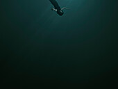 A woman with closed eyes and blank expression, sinking underwater