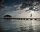 Silhouette person jumping into sea against cloudy sky at dusk