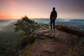 hiker standing on Schluesselfels at sunrise, Busenberg, Palatinate Forest, Rhineland-Palatinate, Germany