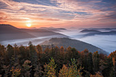 Foggy sunrise at the Kirschfelsen, view over the Palatinate forest, Palatinate Forest, Rhineland-Palatinate, Germany