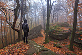 Kalmit in autumn, a hiker at rocks, Palatinate Forest, Rhineland-Palatinate, Germany