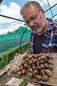 philippe couvreur, snail farmer, produce of the land, preaux-du-perche, france