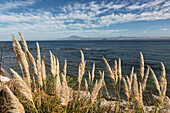 african coast, morocco seen from tarifa, costa del sol, the sunny coast, andalusia, spain