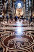 pavement en marbre a l'interieur de la cathedrale notre-dame-de-l'assomption, santa maria assunta, cathedrale de sienne, sienne, italie, union europeenne