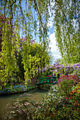 the garden of the clos normand at the impressionist painter claude monet's house, giverny, eure (27), normandy, france